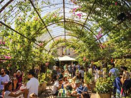 Best Places To Visit In Sydney Things To Do Where To Go