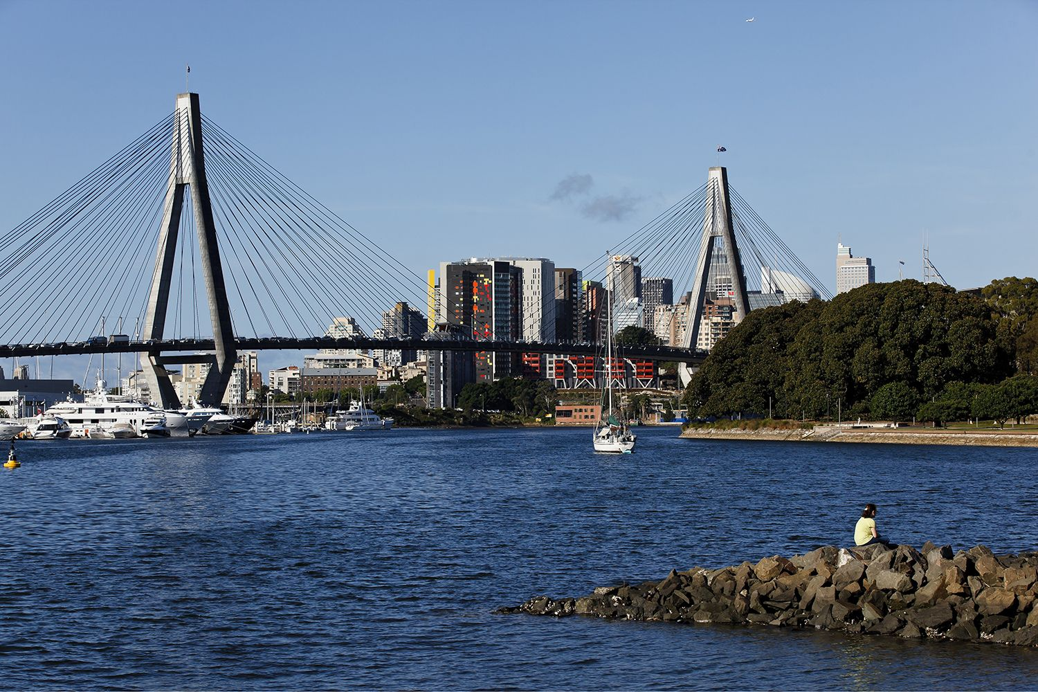 Views across Blackwattle Bay to the CBD and ANZAC Bridge from Glebe