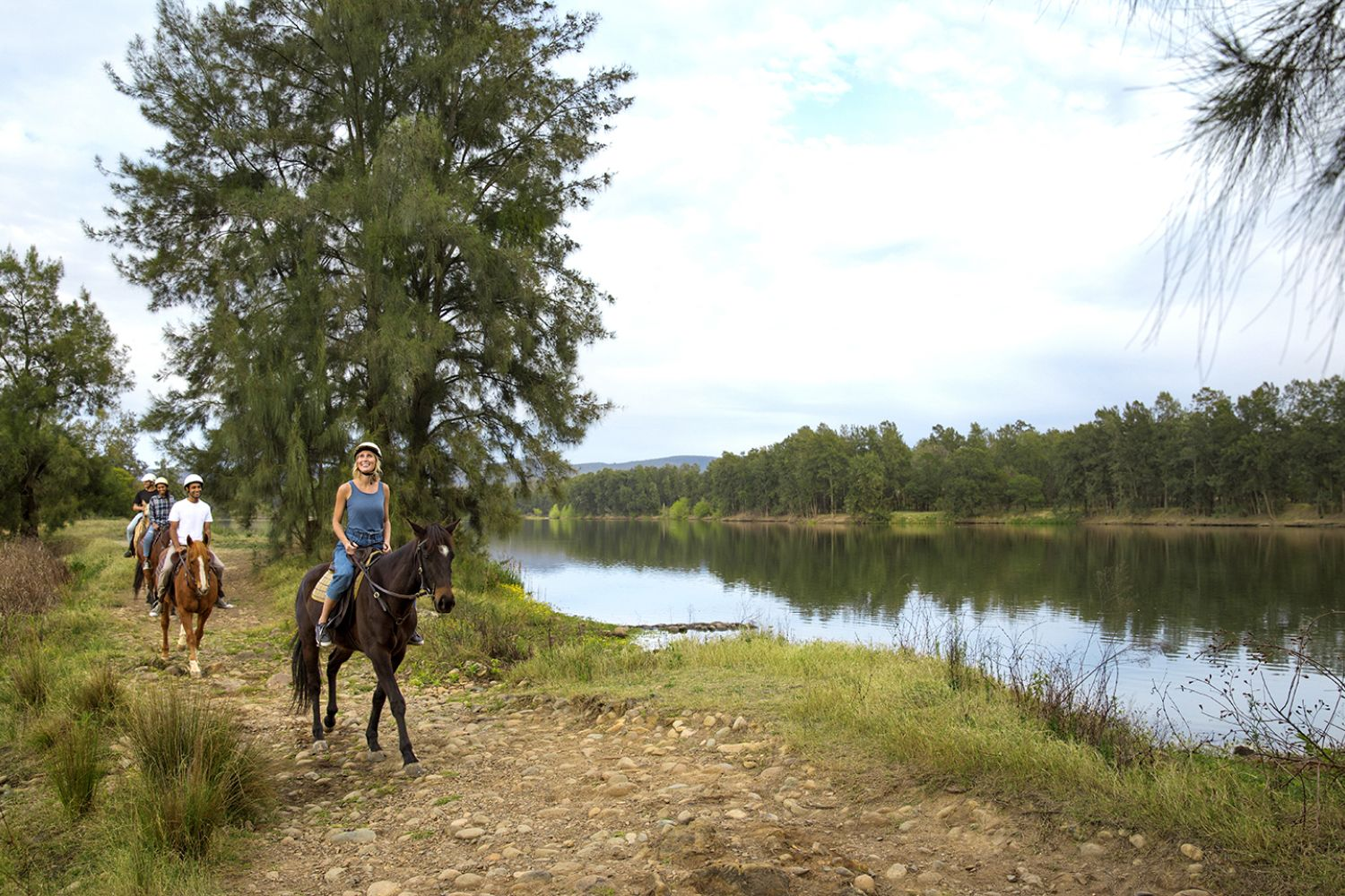 Horse Riding in Sydney - Horseback Riding & Trail Riding