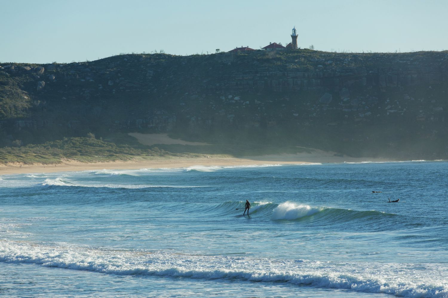Stand up paddleboarder catches a morning wave at Palm Beach, Sydney North