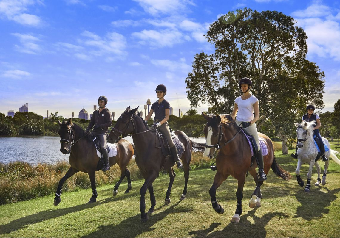 Horse Riding In Sydney Horseback Riding Amp Trail Riding