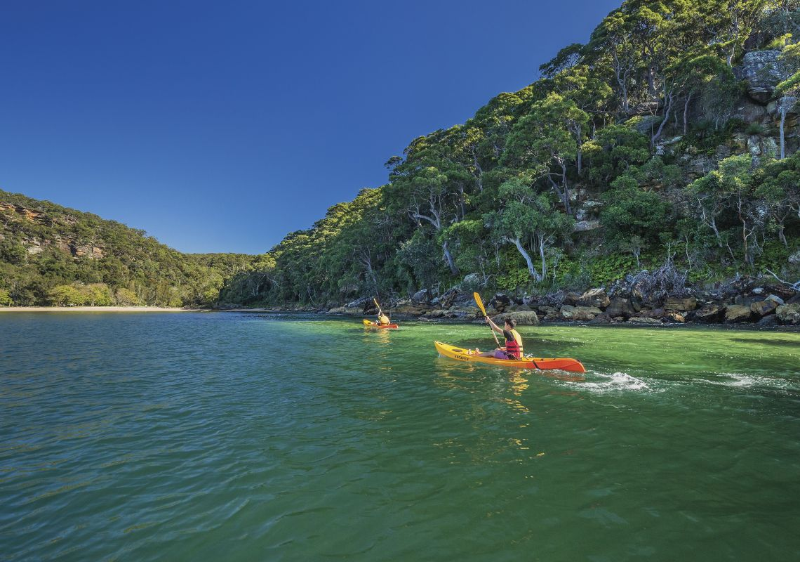 Kayaking, Pittwater