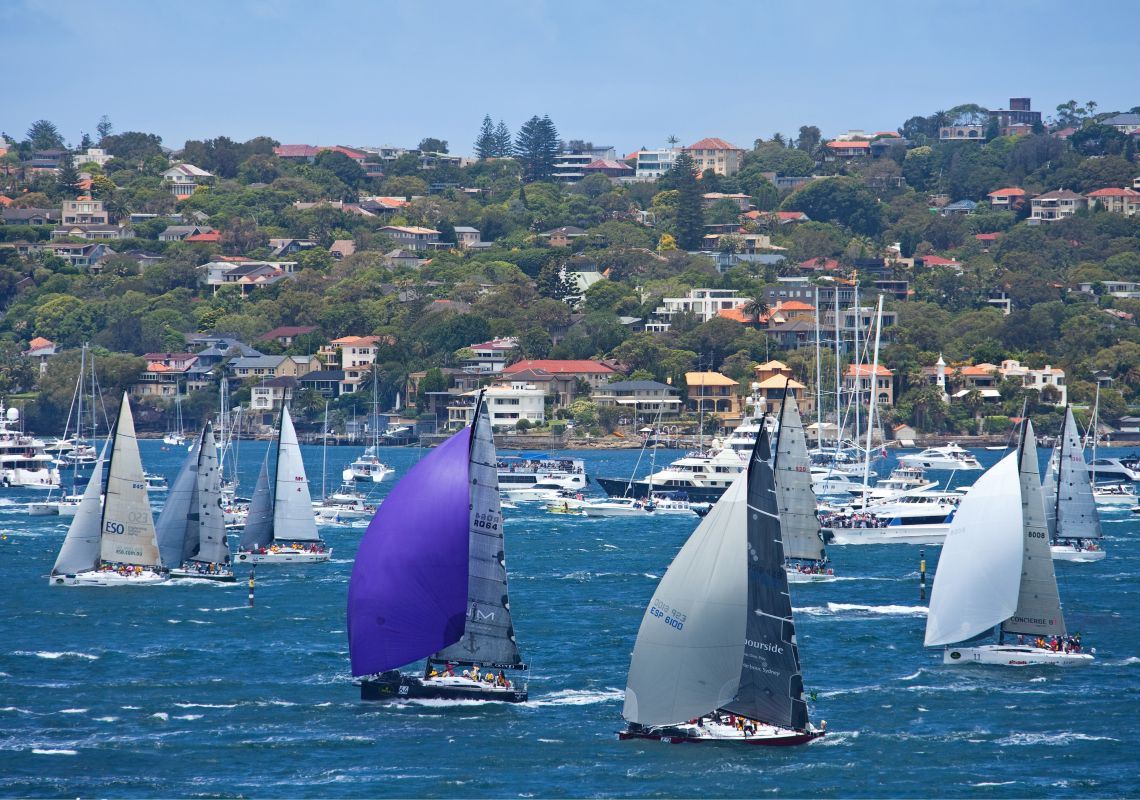 Sails billowing in the Rolex Sydney Hobart Yacht Race, Sydney Harbour