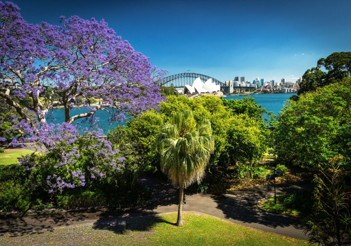 View from the Royal Botanic Gardens, Sydney