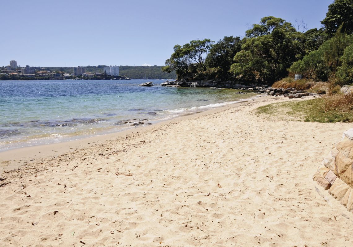 Reef Beach, on the Manly to Spit Walk through Sydney Harbour National Park