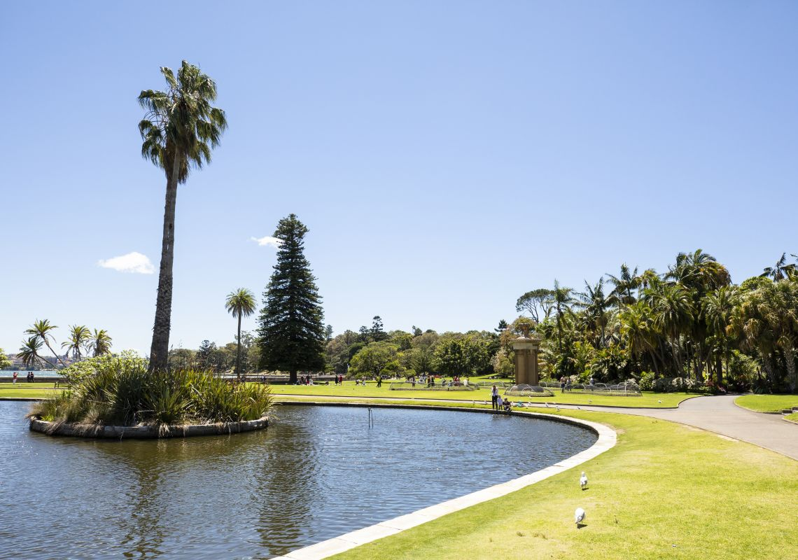 The Main Pond inside the Royal Botanic Garden Sydney in Sydney City