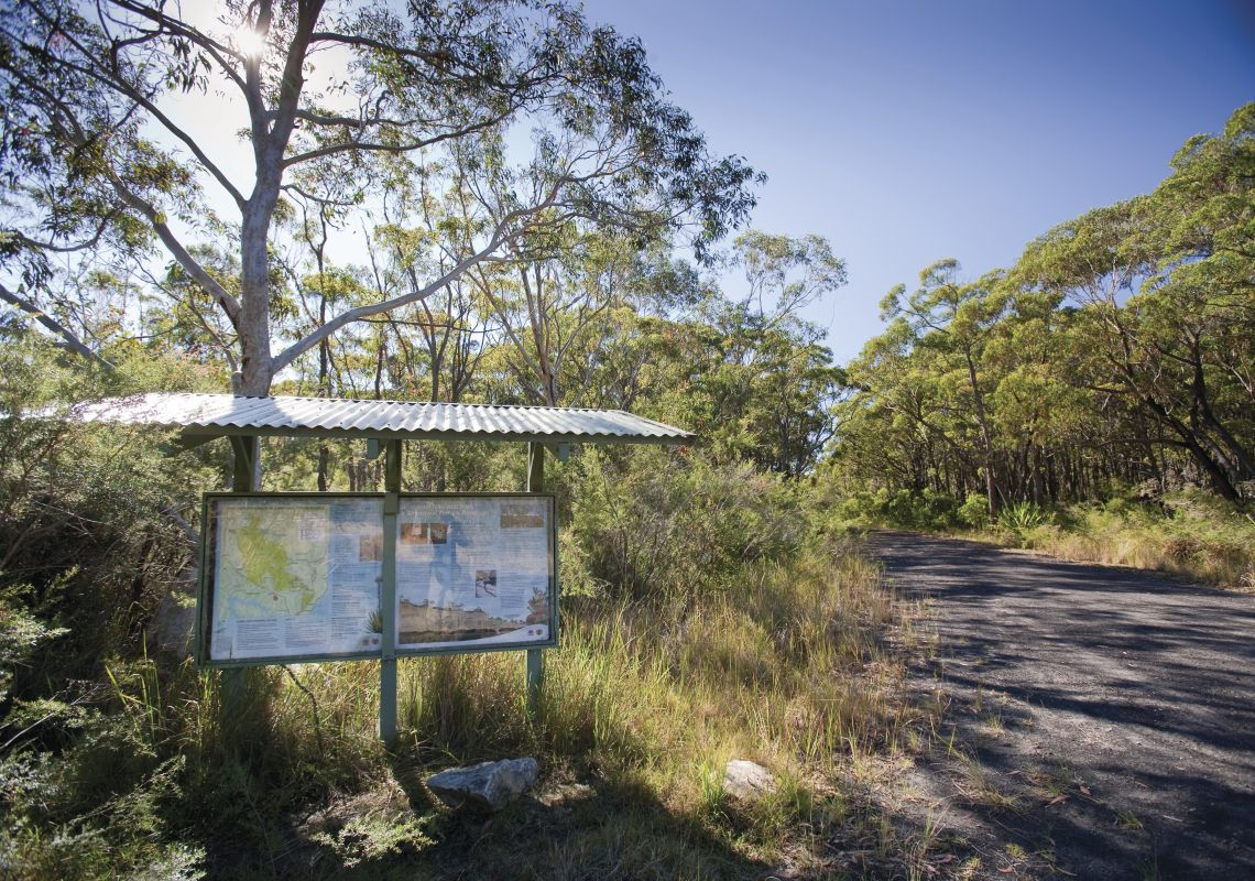 10B Management Trail or mountain bike cycling trail runs through the bushland of Dharawal National Park