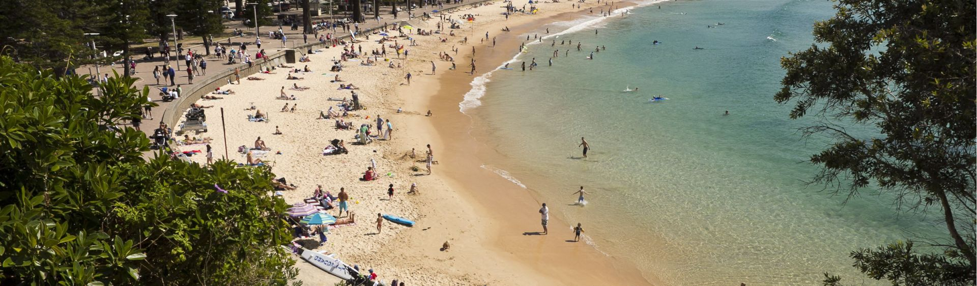 Sydney Australia Official Travel Accommodation Website Manly Beach
