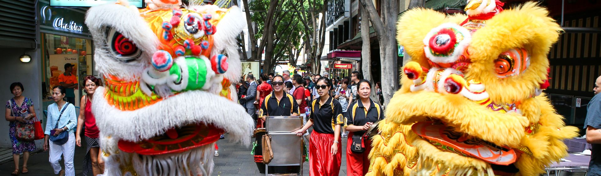 Chinese New Year Dragons, Chinatown, Sydney