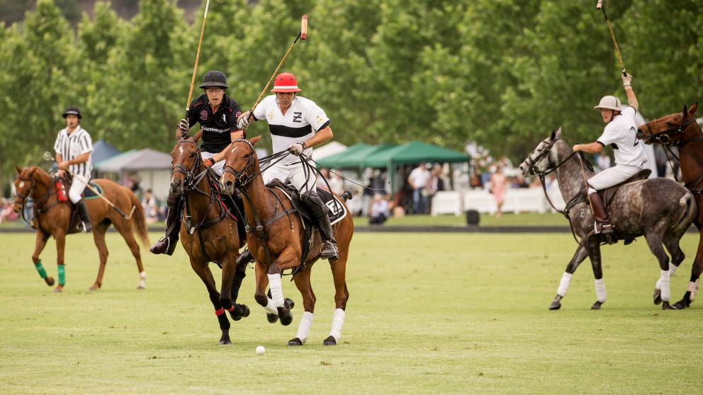Polo in the Hawkesbury