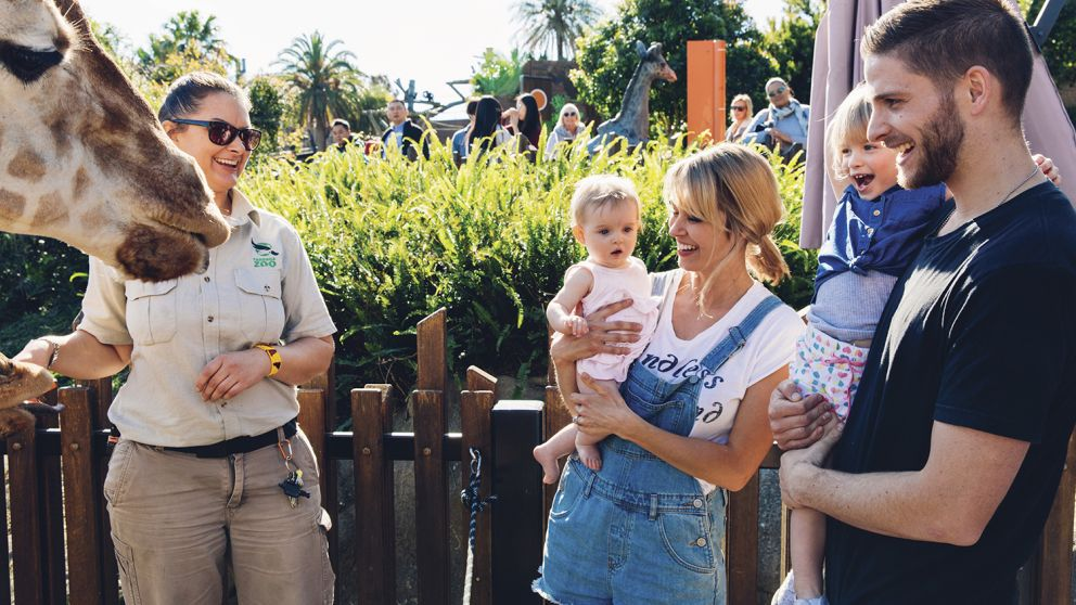 Family enjoying an encounter with a giraffe during the giraffe keeper talk at Taronga Zoo, Sydney