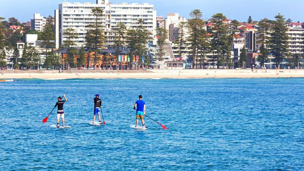 Stand up paddleboarding in Manly