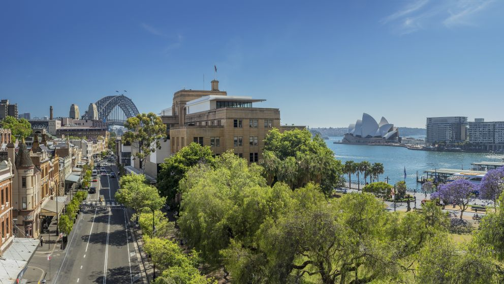 The Rocks with views of Vibrant Jacaranda trees in spring bloom at Circular Quay, Sydney