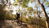 Mountain biking at Manly Dam, Sydney North