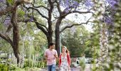 Couple enjoying a walk through Prince Alfred Square, Parramatta in Western Sydney