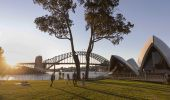 Picnic in Sydney - The Royal Botanic Garden