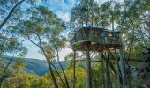 Love Cabins - Blue Mountains Treehouse