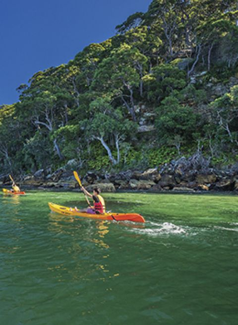 Friends kayaking on Pittwater