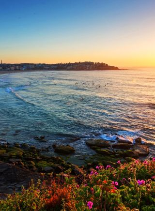 Sunrise over Bondi Beach
