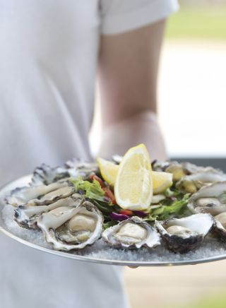 Fresh Sydney Rock Oysters at the Tathra Hotel, on the Sapphire Coast on NSW
