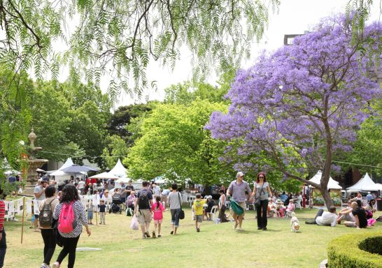 Northside Produce Market - Ted Mack Civic Park, Chatswood. Image Credit: North Sydney Community Centre