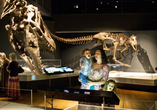Mum and son exploring Australian Museum - Sydney